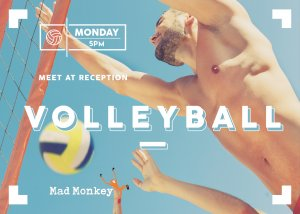mad-monkey-cairns-free-event-monday-5pm-volleyball