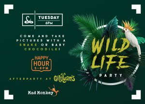 2-tuesday-6pm-wildlife-CNS