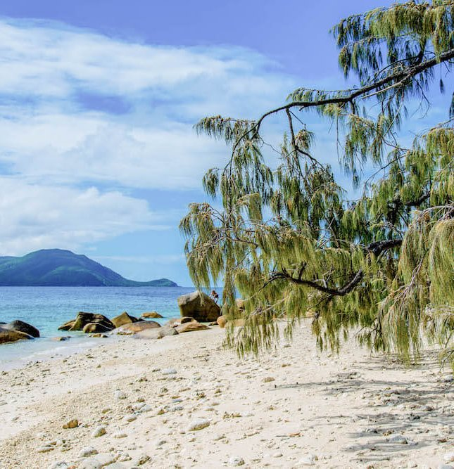 why-you-need-to-visit-fitzroy-island