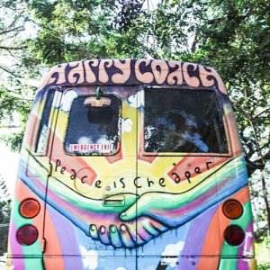 nimbin-with-happy-coach-product-image